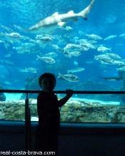 Aquarium Costa Brava