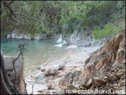Aigua Xelida Costa Brava