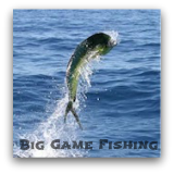 Fishing is excellent all year long on the Costa Brava. Let us take you to the best fishing spots. Join us on our big game fishing trips. Fun is guaranteed!