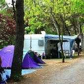 Camping Costa Brava - Camping Tamariu